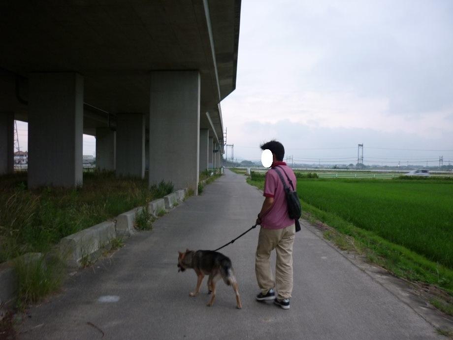 201506電車散歩-07