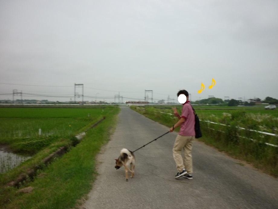 201506電車散歩-08
