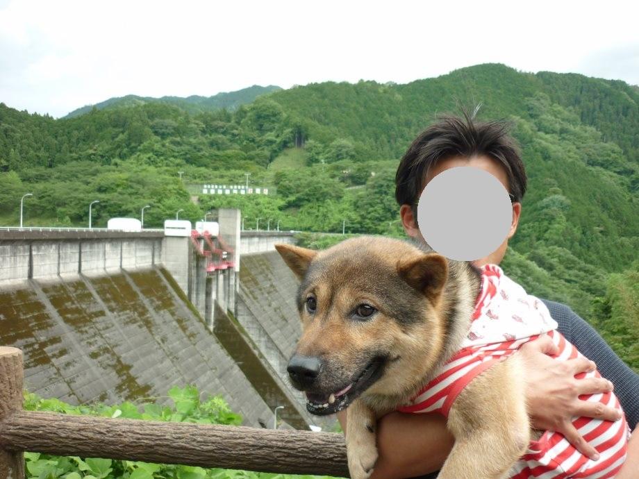 201506君ケ野ダム-01