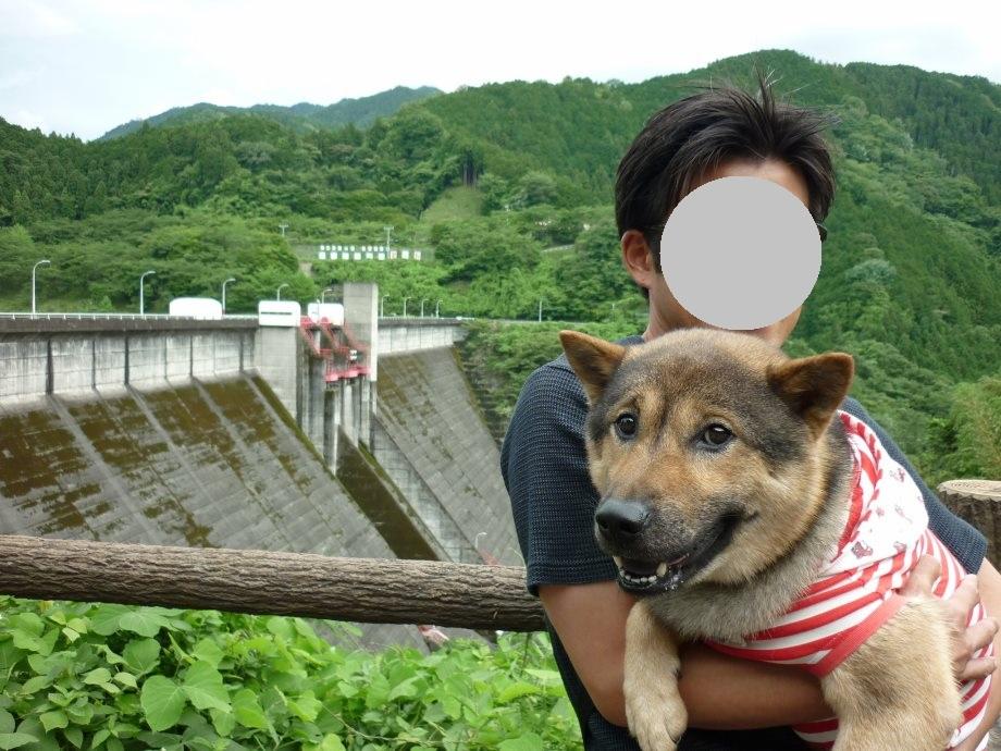 201506君ケ野ダム-02