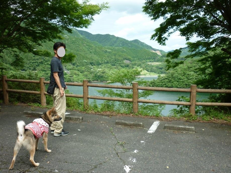 201506君ケ野ダム-04