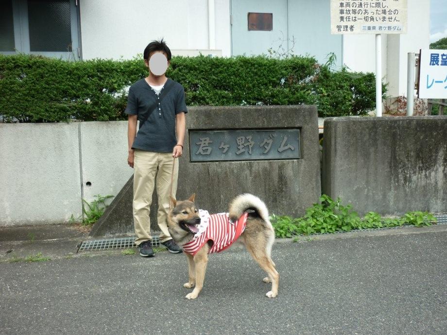 201506君ケ野ダム-08