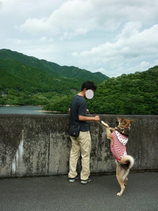 201506君ケ野ダム-11