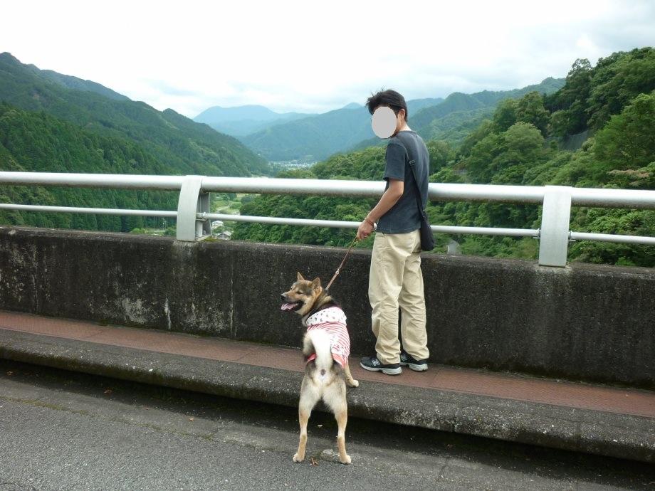 201506君ケ野ダム-12