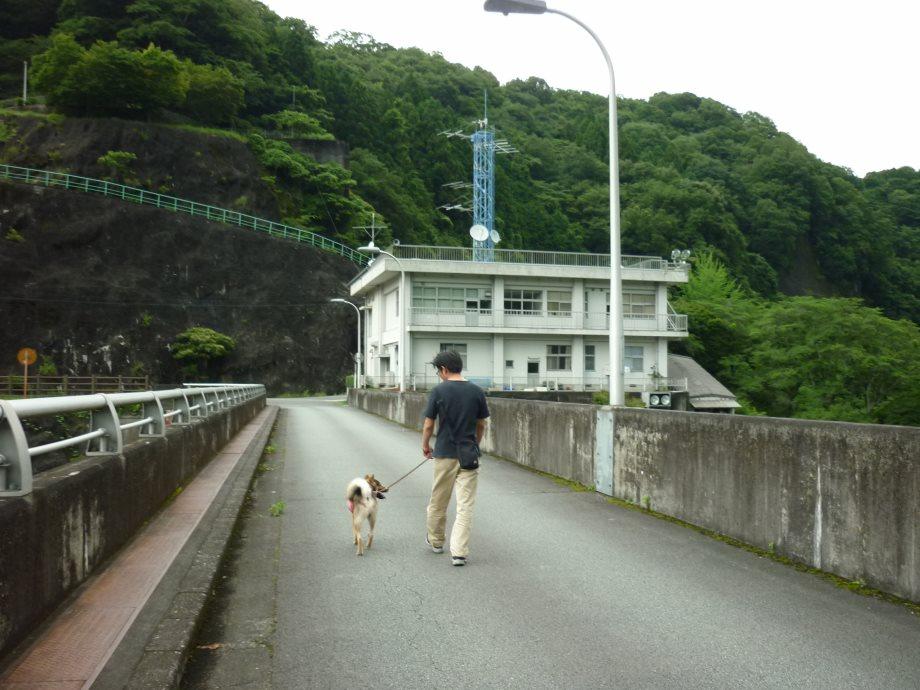 201506君ケ野ダム-23