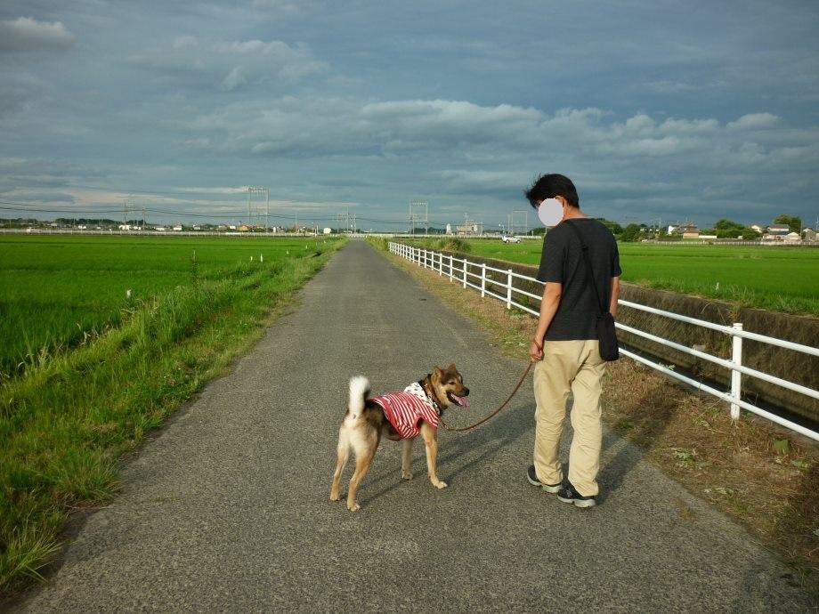 201506お散歩新規開拓-03