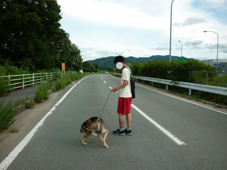 201506お散歩新規開拓-05