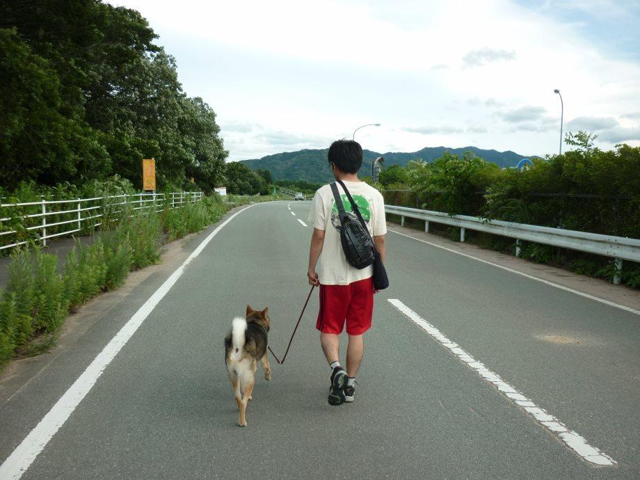 201506お散歩新規開拓-07