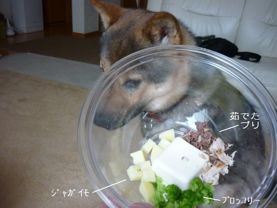 201507お豆腐シーズンとクプレラ-04