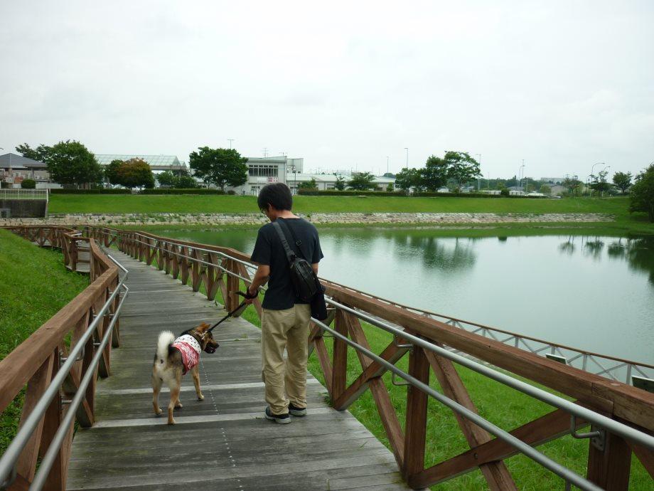 201507亀山サンシャインパーク-06