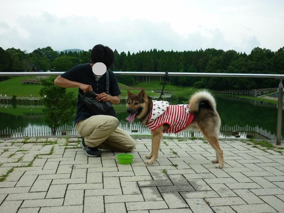 201507亀山サンシャインパーク-11