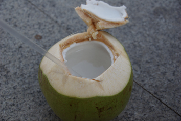 2 ココナッツ2