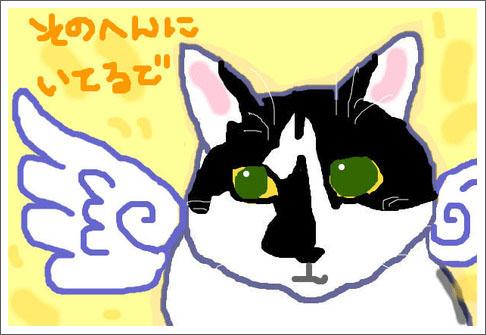 150621_nihongaRocktnsi.jpg
