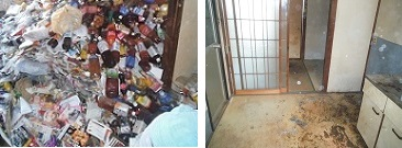 ごみ屋敷 掃除 全室