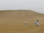 砂丘の入り口あたり