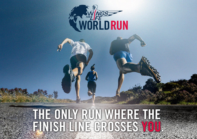 wings-for-life-world-run_0_710.jpg