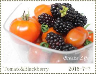 tomatoblackberry.jpg