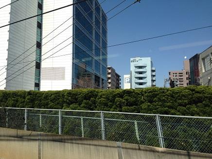 3172015横浜出張S5
