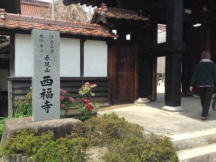 4242015西福寺S1
