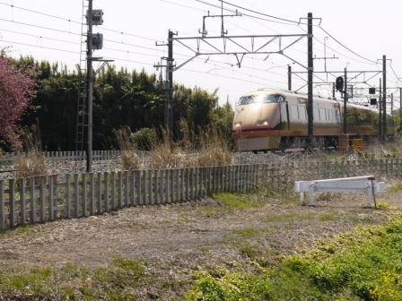 P1460188.jpg