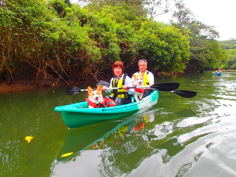 西表島旅行・愛犬とカヌーツアー・KEN GUIDE