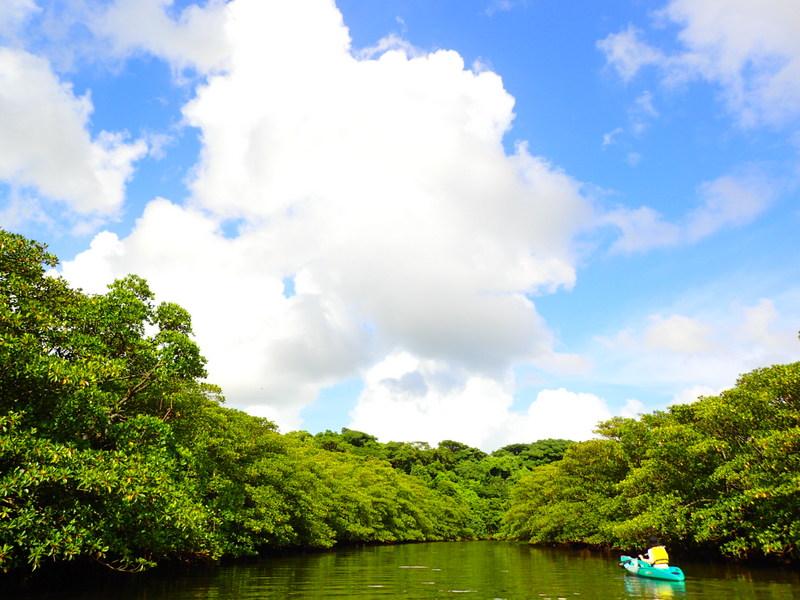 西表島カヌーツアー・ケンガイド
