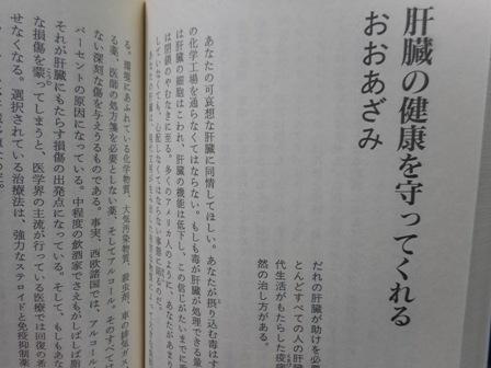oazami2.jpg