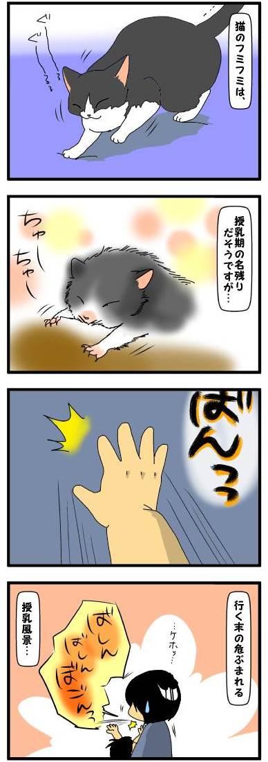 toto746.jpg