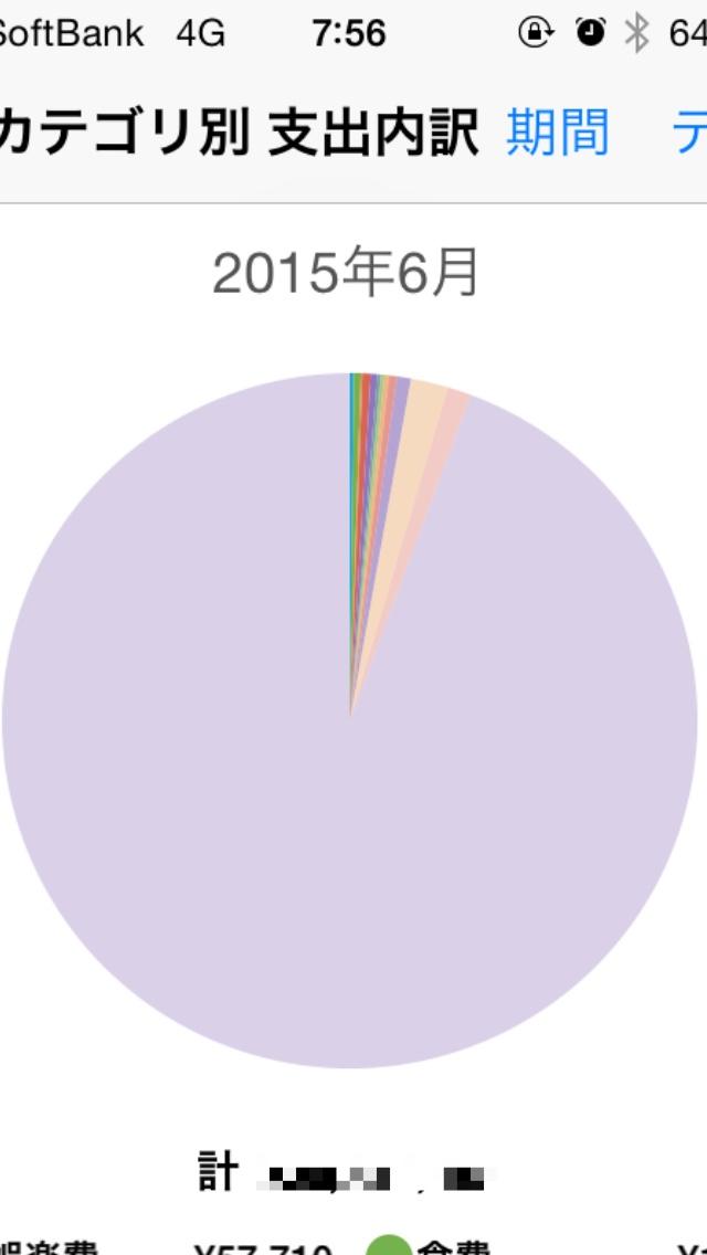 支出グラフ