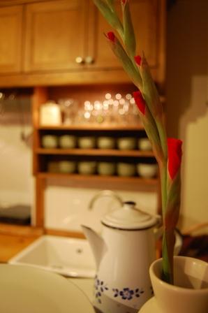 開花の準備