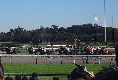 nakayama201412a.jpg