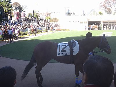 nakayama201412c.jpg