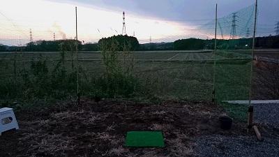 20150111ゴルフ⑤2