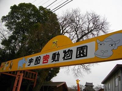 20150314宇都宮動物園1