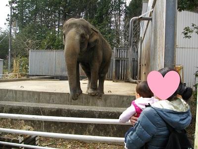 20150314宇都宮動物園3