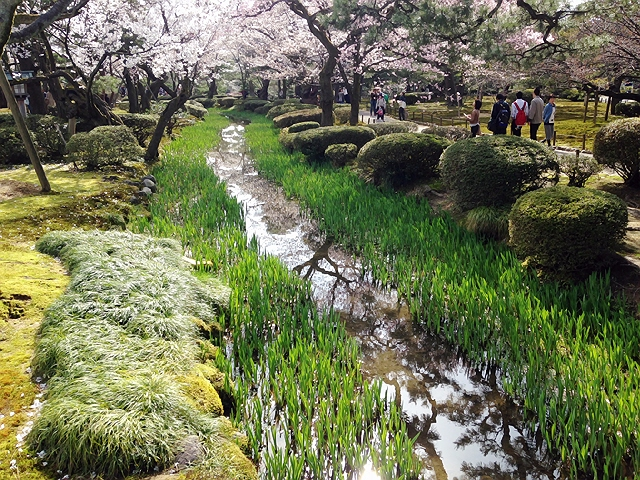 4月4日~5日サンダーバードで金沢に行ってきました(^^♪