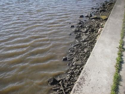 干潮の水位