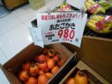 ピカソ柿blog