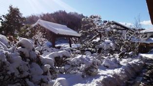 20150131雪の我が家2