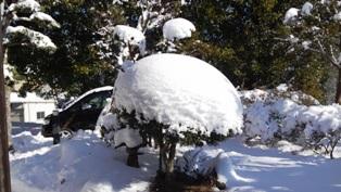20150131雪の我が家