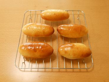 201504 ドッグパン1