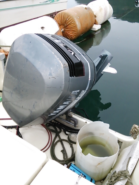 ボート見学1