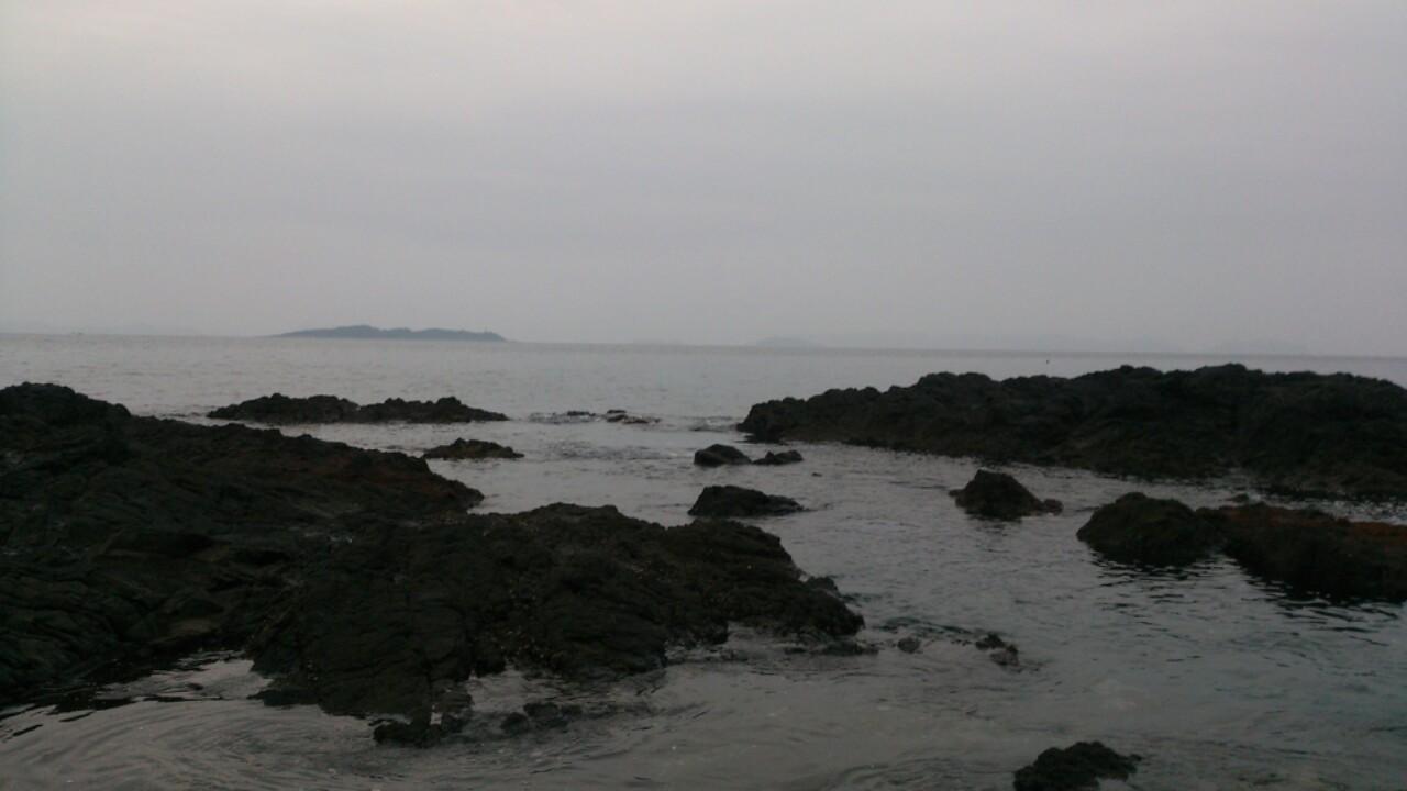 平戸の釣果3