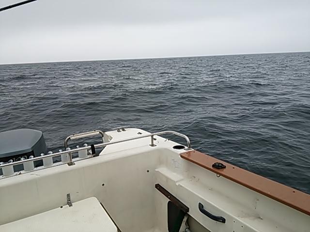 ボート釣果6