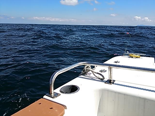 ボートエギング16