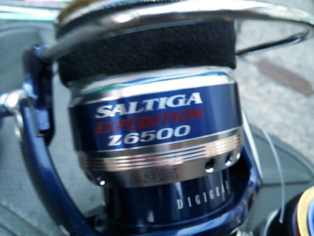 ソルティガ1