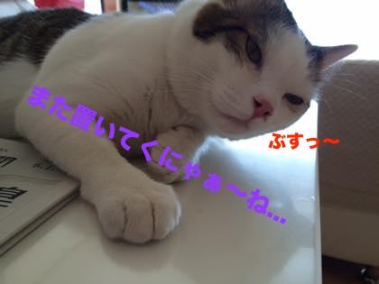 2_201506021013223db.jpg