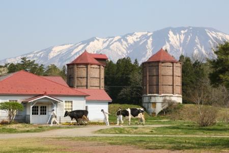 小岩井農場-6