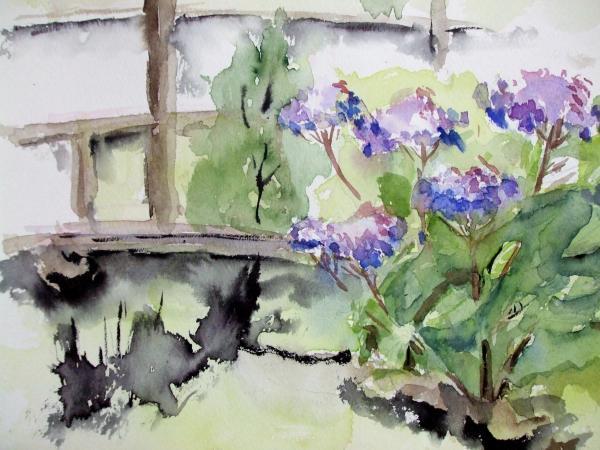 久安寺 額紫陽花