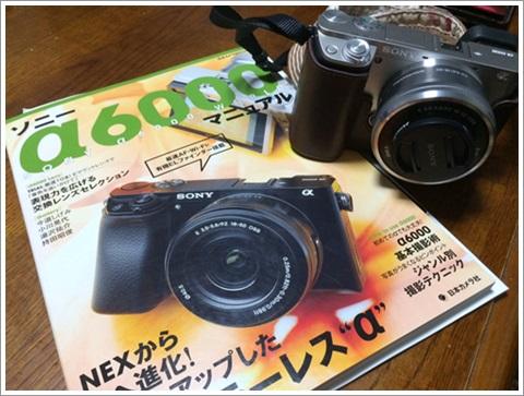IMG_2795.jpg